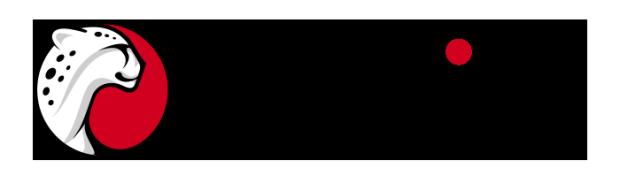 playtika_logo